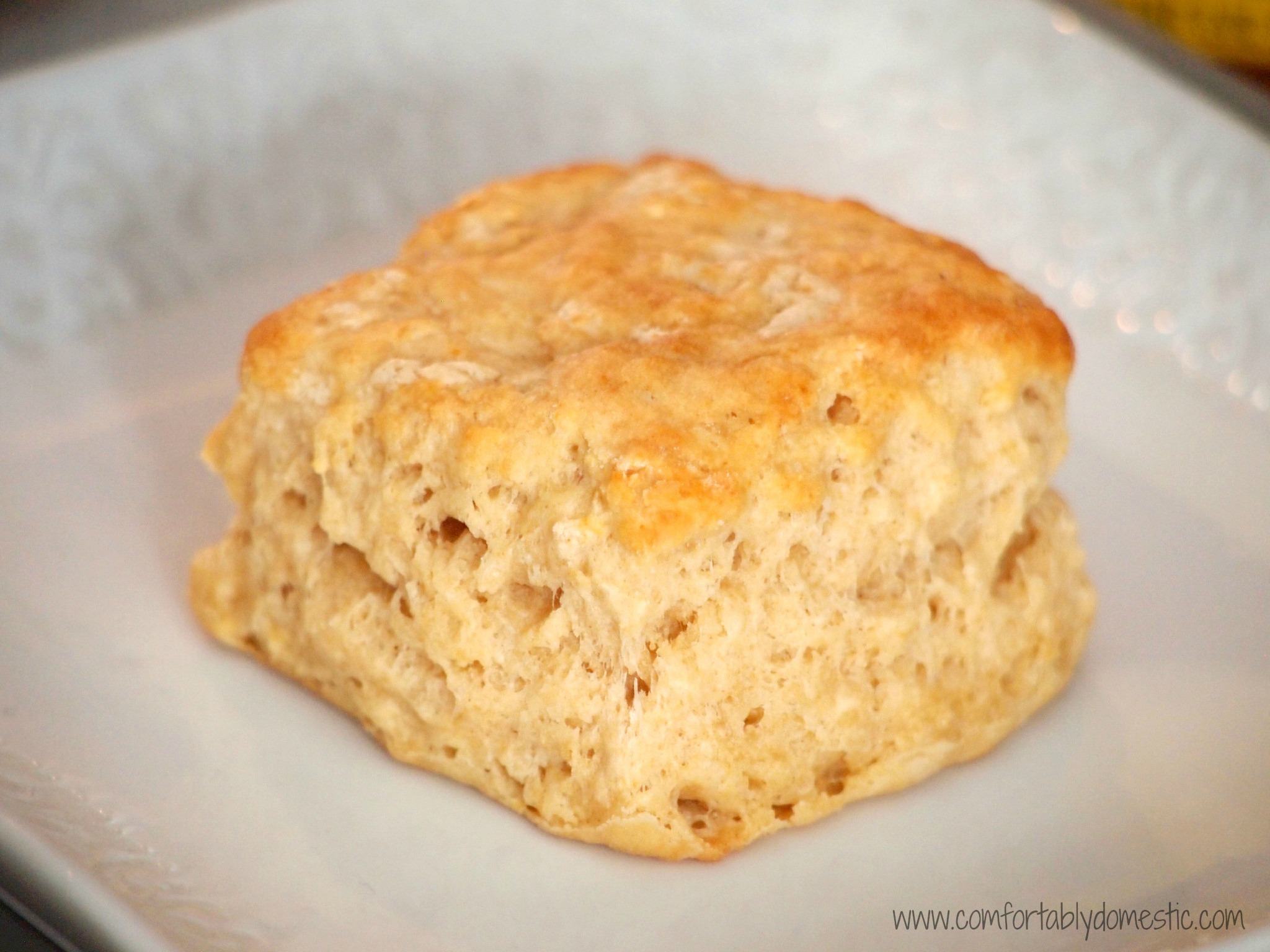 buttermilk biscuits buttermilk biscuits buttermilk biscuits